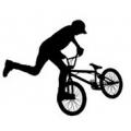 BMX-велосипеды (5)