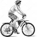 """Велосипеды с колесами 27,5"""" (223)"""