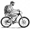 Городские велосипеды (216)