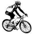 Спортивные велосипеды (19)