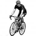 Шоссейные велосипеды (142)