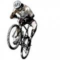 Горные велосипеды (798)